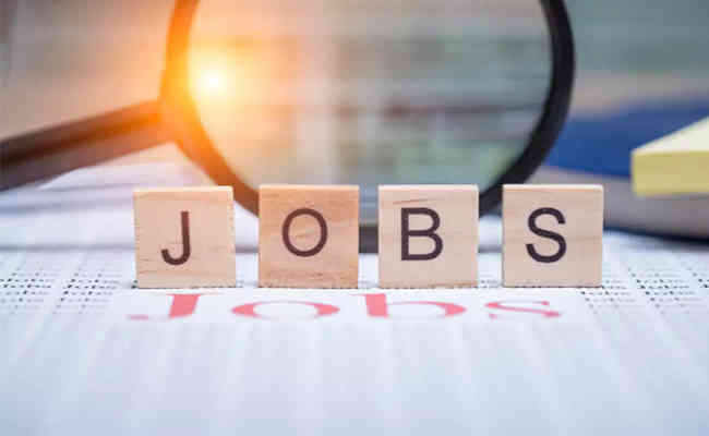 Government unaware of number of job loss during pandemic