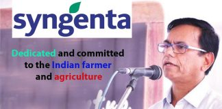 Top IT Brtand - SYNGENTA INDIA LTD.