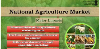 National agriculture market portal connect with 250 Indian markets